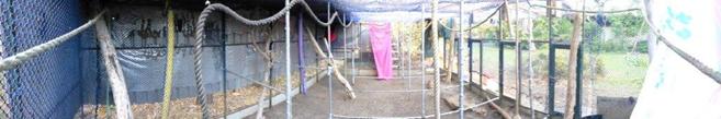 setup-cage